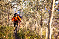 Guided Mountain Biking Adventure from Whitehorse