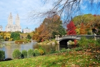 Highlights of Central Park Walking Tour Photos