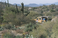 Hummer Night Tour in the Sonoran Desert Photos