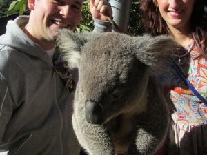 Sydney Taronga Zoo's Australian Animals Tour and Sky Safari Photos