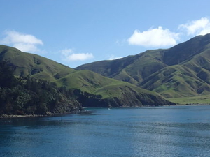 InterIslander Ferry - Wellington to Picton Photos