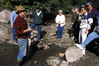 Juneau Shore Excursion: Gold Mining and Panning at Gold Creek from Juneau Photos