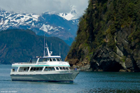 Kenai Fjords National Park Cruise from Seward Photos