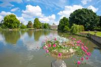 Kew Gardens Entrance Ticket Photos