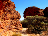 Kings Canyon Day Trip from Ayers Rock Photos