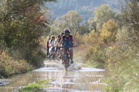 Konavle Valley Small-Group Bike Tour from Dubrovnik Photos