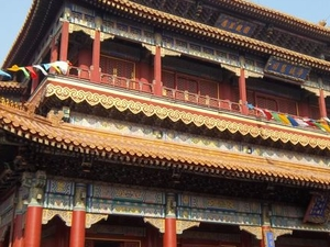 Beijing Historical Tour including the Summer Palace, Lama Temple and the Panda Garden Photos