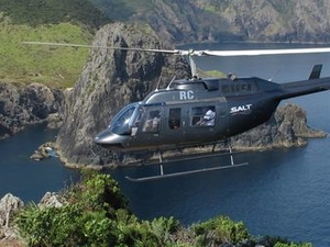 Bay of Islands and Hole in the Rock Scenic Helicopter Tour Photos