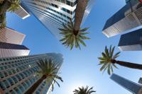 Las Vegas to Los Angeles / Anaheim Luxury Transfer Service Photos
