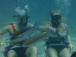 Punta Cana Combo Tour: Speedboat Ride, Snuba and Snorkeling Photos