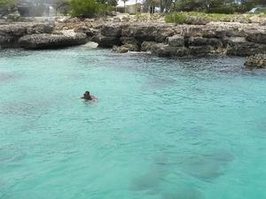 Aruba Lunch and Snorkel Half-Day Cruise Photos