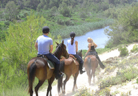 Mallorca Evening Tour: Horseback Riding, Dinner and Dance Photos