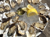 Marin County Oyster Farm Tour and Tasting Photos