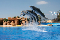 Marineland Dolphins Show and Water Park Admission Ticket with Transport from Costa Brava Photos