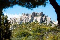 Marseille Shore Excursion: Private Tour of Les Baux de Provence Photos
