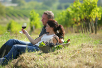 Maryland Wine Country Tour from Baltimore Photos