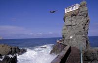 Mazatlan Shore Excursion: City Tour and Cliff Diving Show Photos