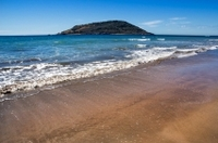 Mazatlan Shore Excursion: Stone Island Adventure Tour