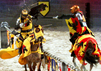 Medieval Times Dinner and Tournament with Transport Photos