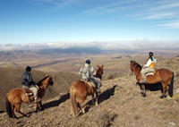 Mendoza Horseback Riding Tour with Traditional Argentine Asado Photos