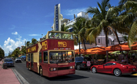 Miami Hop-On Hop-Off Tour with Optional Biscayne Bay Cruise  Photos