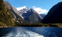 Milford Sound Full-Day Tour from Queenstown to Te Anau Photos