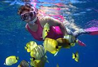 Na Pali Kauai Snorkel Expedition Photos