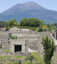 Naples City and Pompeii Half-Day Sightseeing Tour from Sorrento Photos