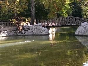 Hidden Athens Walking Tour and Picnic: Plaka and the Hills of Athens Photos
