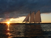 Newport Bay Evening Cruise Aboard Tall Ship