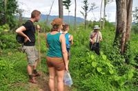 Opium Trail Trek Including Wat Phra That Doi Suthep and Hmong Village Tour Photos