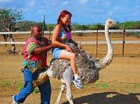 Ostrich Farm and HATO Caves Combo Adventure Photos