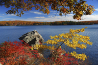 Overnight Fall Foliage Tour from New York City Photos