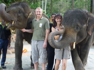 Private Tour: Elephant Orphanage Sanctuary Day Tour from Kuala Lumpur Photos