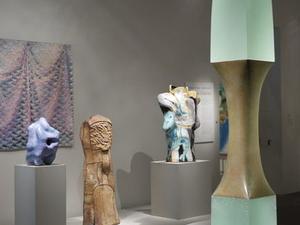 de Young Museum Admission Photos