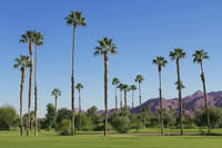 Palm Springs and Outlet Shopping Day Trip from Los Angeles Photos