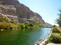 Palm Springs Wildlands Preserve Nature Tour Photos