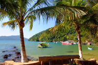 Paraty Rainforest Trek and Secluded Beach Tour Photos