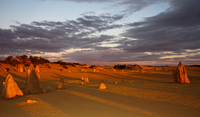 Pinnacles Desert, New Norcia and Wildflowers Day Tour from Perth Photos