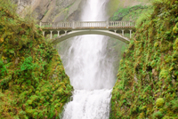 Portland Combo: Hop-On Hop-Off Sightseeing Trolley and Columbia River Gorge Tour Photos