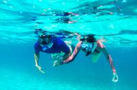 Power Snorkel Adventure in Bermuda Photos