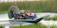 Private Airboat Tour with Alligator Encounter and Transport Photos