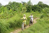 Private Bike Tour of Bongkasa Village Photos