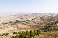 Private Half Day Tour to Madaba, Mount Nebo and Amman City Tour Photos