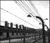 Private Tour: Auschwitz-Birkenau Tour from Krakow Photos