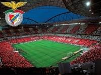 Private Tour: Lisbon Football Experience Photos