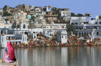 Private Tour: Pushkar Day Trip from Jaipur Photos