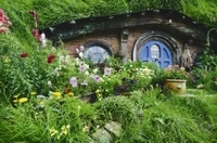 Private Tour: The Lord of the Rings Hobbiton Movie Set Tour from Auckland Photos