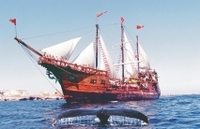 Puerto Vallarta Shore Excursion: Banderas Bay Pirate Sailing Cruise Photos