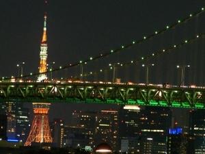 Tokyo Bay Dinner Cruise Photos